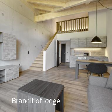 Lodge M - Ferienwohnungen in Saalfelden